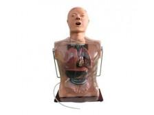 TY/hl73多功能透明洗胃训练模型